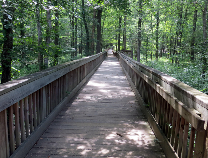 Wooded Bridge